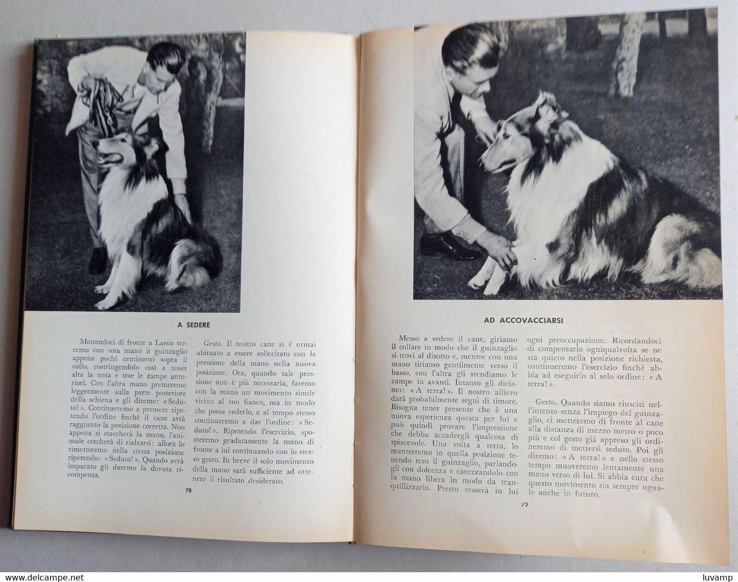 LA STORIA DI LASSIE - Pagine 128  (130410) - Libri, Riviste, Fumetti