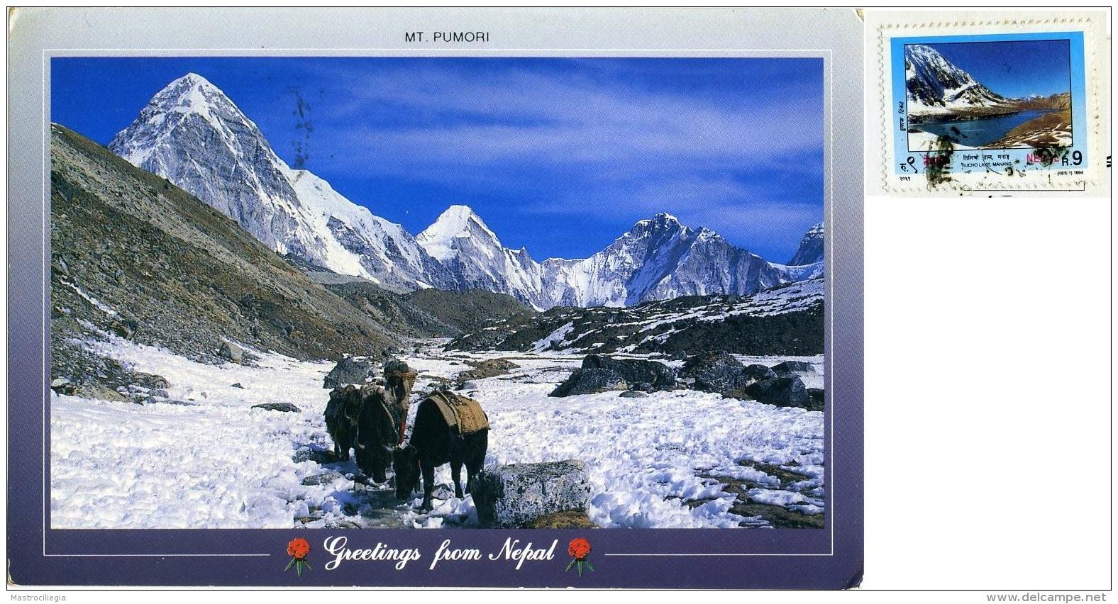 NEPAL  Greetings From.. Mt. Pumori  Near Kalapatthar Everest  Nice Stamp - Nepal