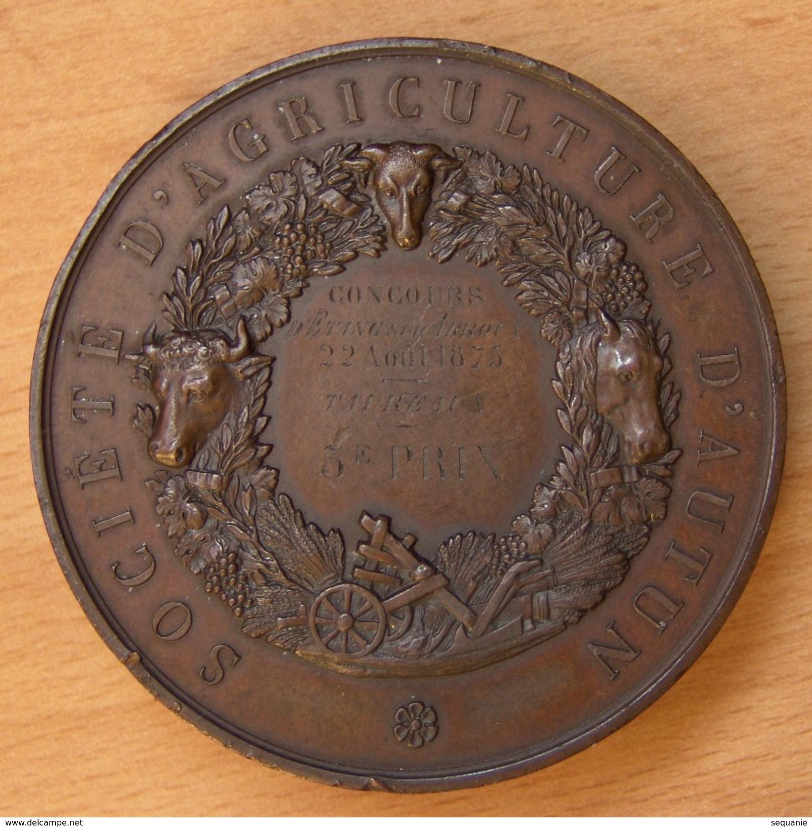 Médaille Société D'Agriculture D' AUTUN Concours D'Étang Sur Arroux 1875 - Professionnels / De Société