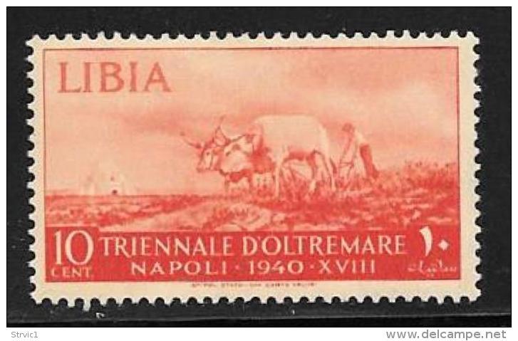 Libya, Scott #89 Mint Hinged Oxen And Plow, 1940 - Libya