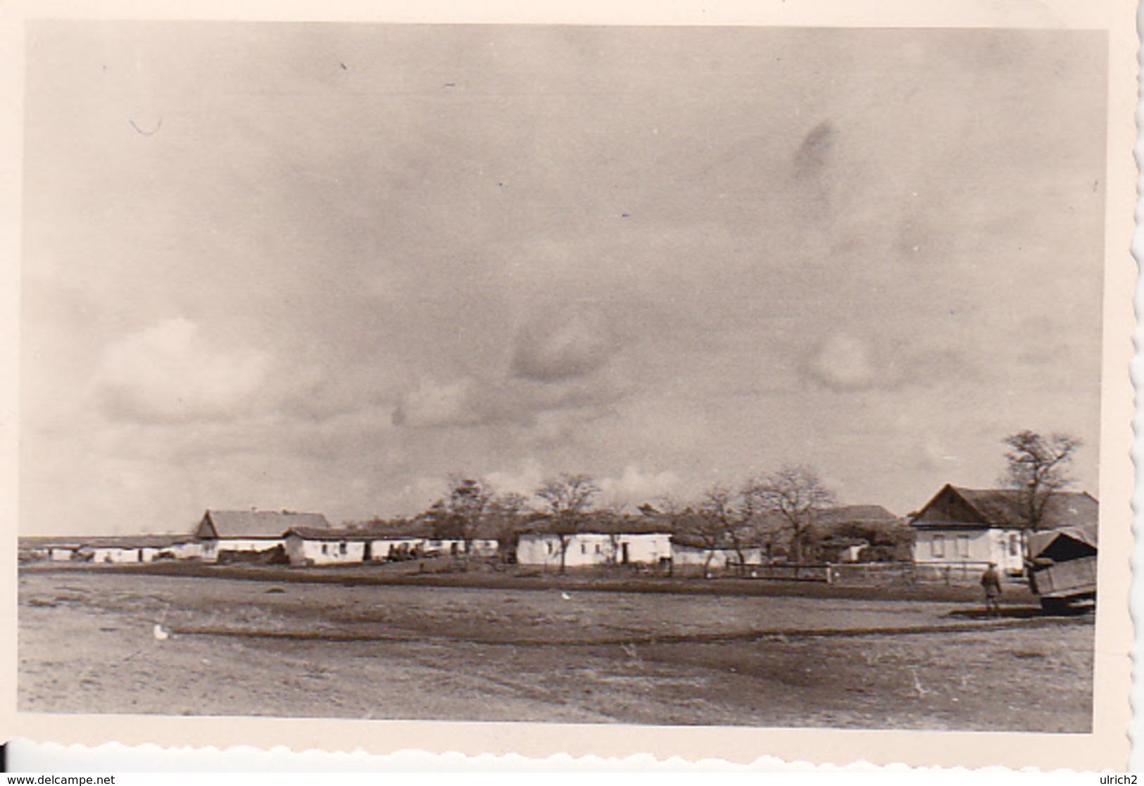 Foto Dorfstraße In Novo Troitzkoje - Süd-Ukraine - Oktober 1941 - 9*6cm (27012) - Orte
