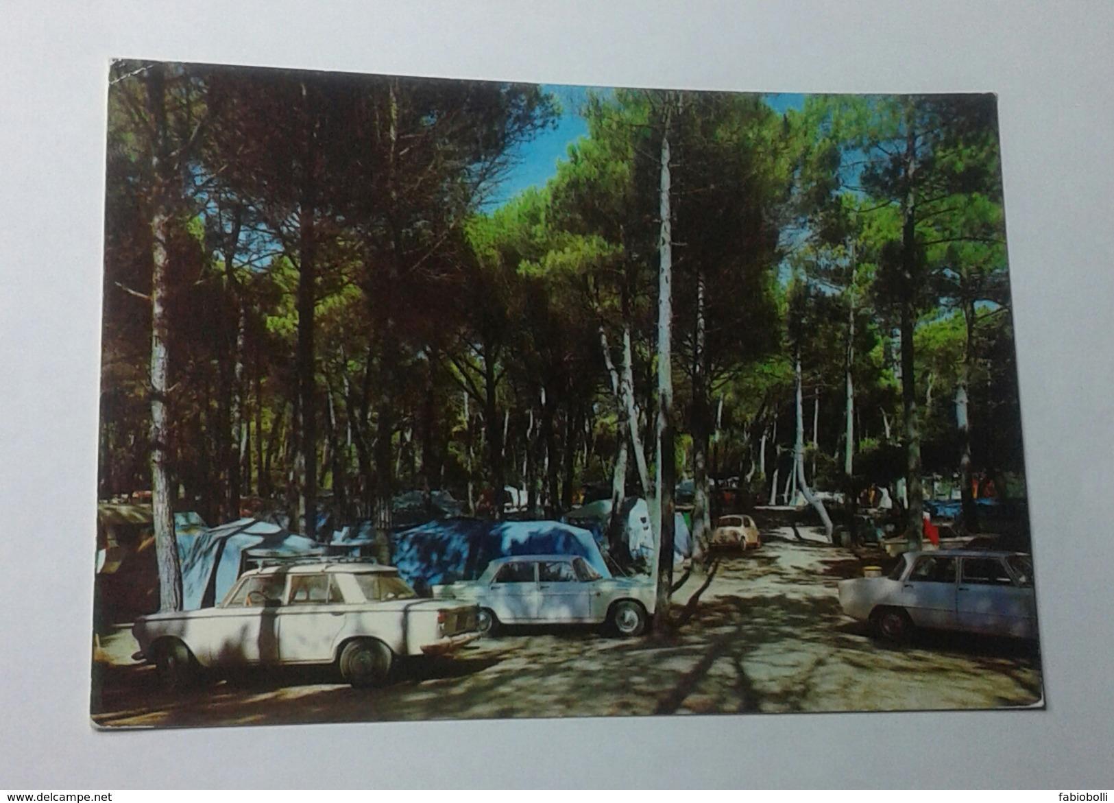 MARINA DI TORRE DEL LAGO PUCCINI - CAMPING IN PINETA  (5066) - Lucca