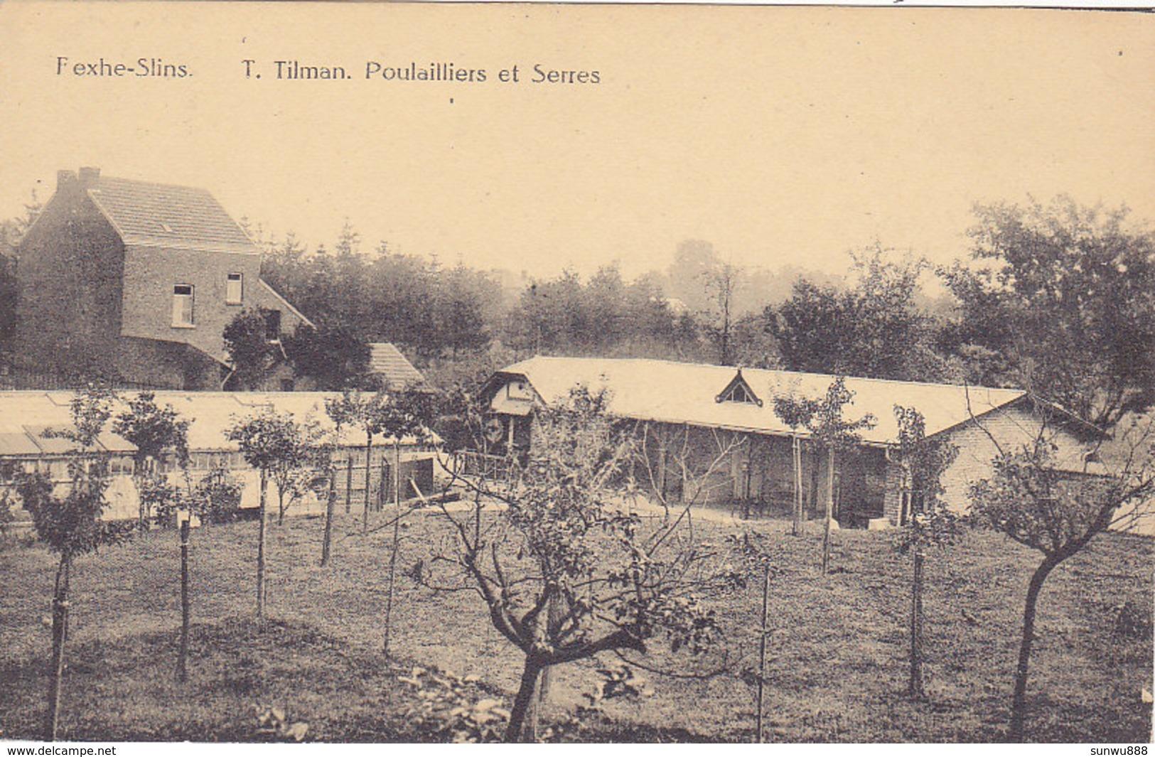 Fexhe - Slins - T. Tilman Poulaillers Et Serres (Edit. Henri Kaquet) - Juprelle