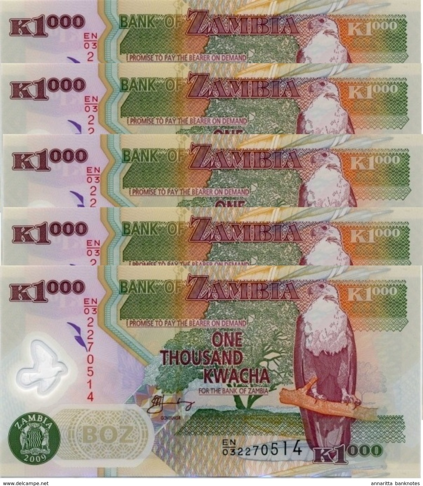 SAMBIA 1000 KWACHA 2009 P-44g I (BFR)  5 PCS [ZM146g] - Zambia