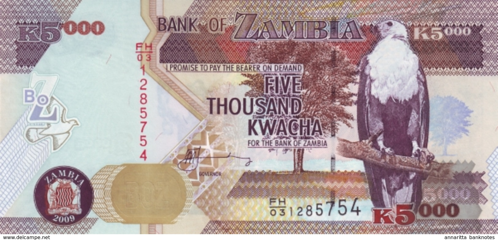 ZAMBIE 5000 KWACHA 2009 P-45e NEUF [ZM147e] - Zambia