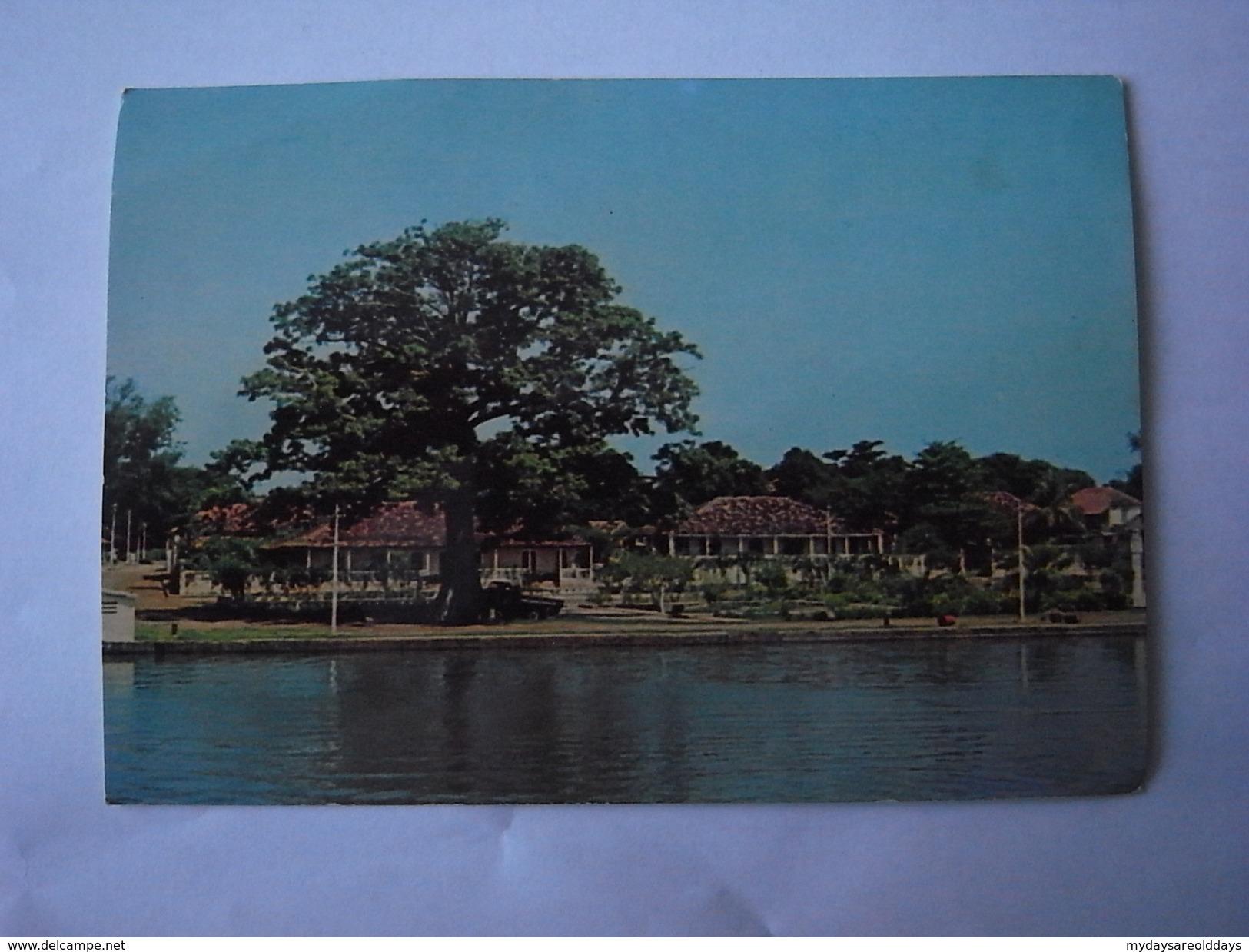 1 Cpa - Guine -  (2 Scans) - Guinea-Bissau