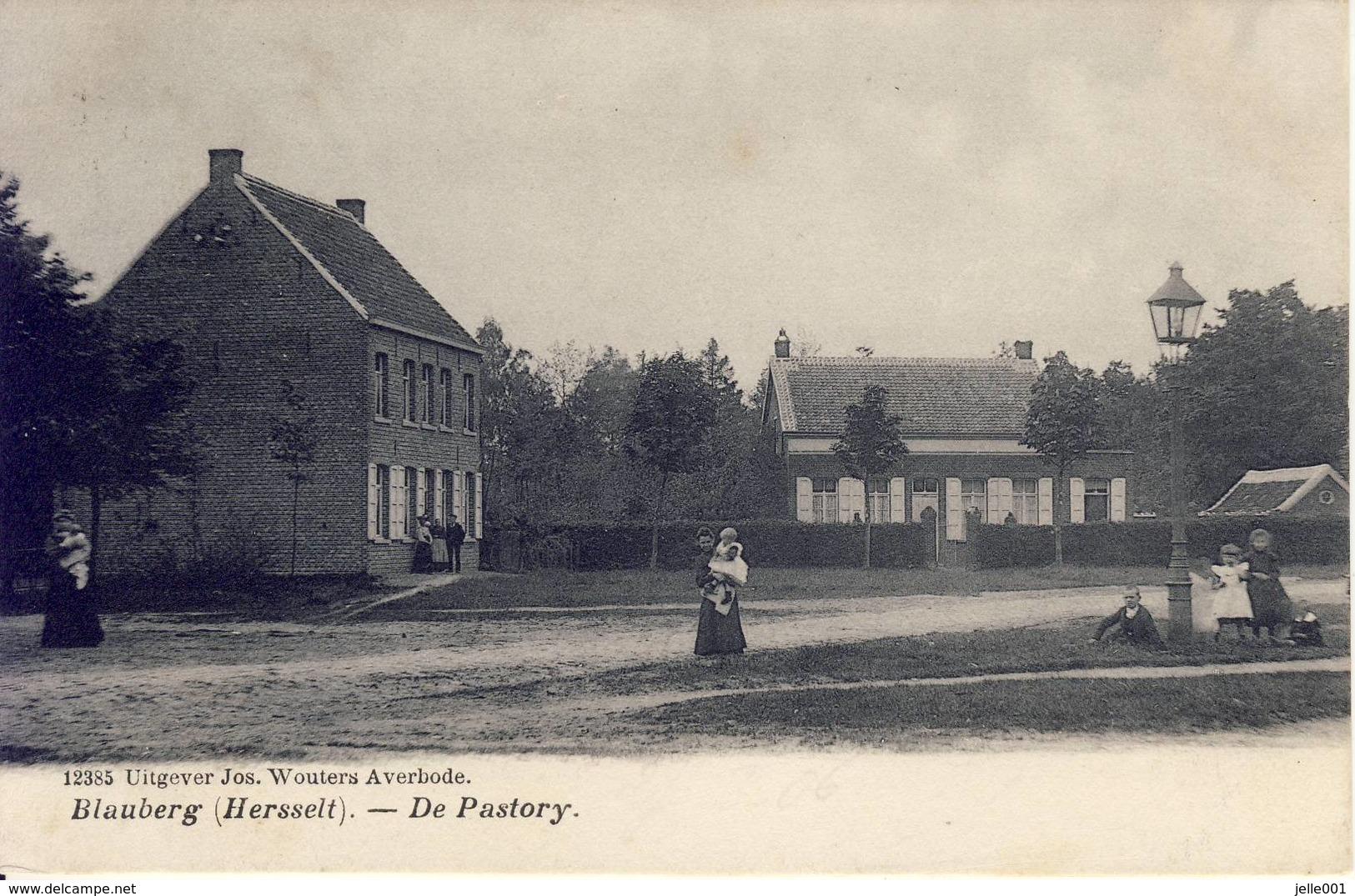 Blauberg Herselt De Pastory (en Omgeving) 1919 - Herselt