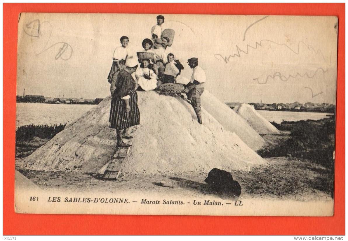 IAG-10 Les Sables-d'Olonne  Marais Salants. Un Mulan. TRES ANIME. Circulé - Sables D'Olonne