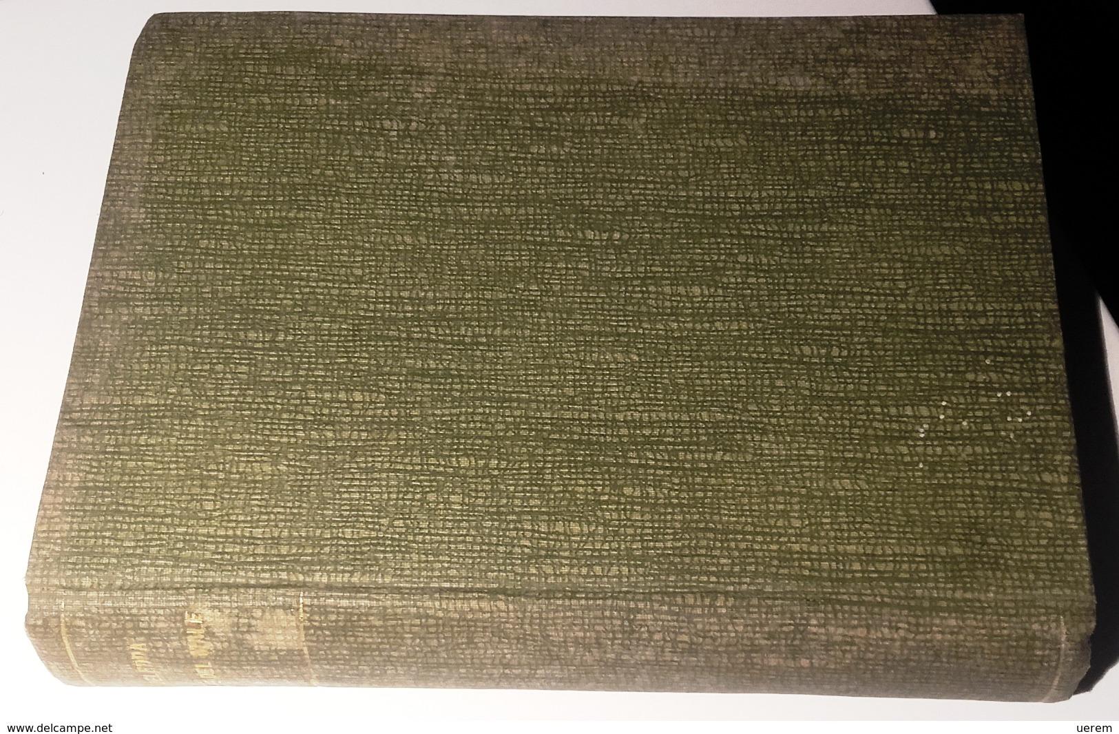 1906 SARDEGNA DELEDDA ROMANZO DELEDDA GRAZIA LA VIA DEL MALE Roma, Nuova Antologia 1906 Pag. 329 – Cm 13 X 19,5 Le - Libri, Riviste, Fumetti