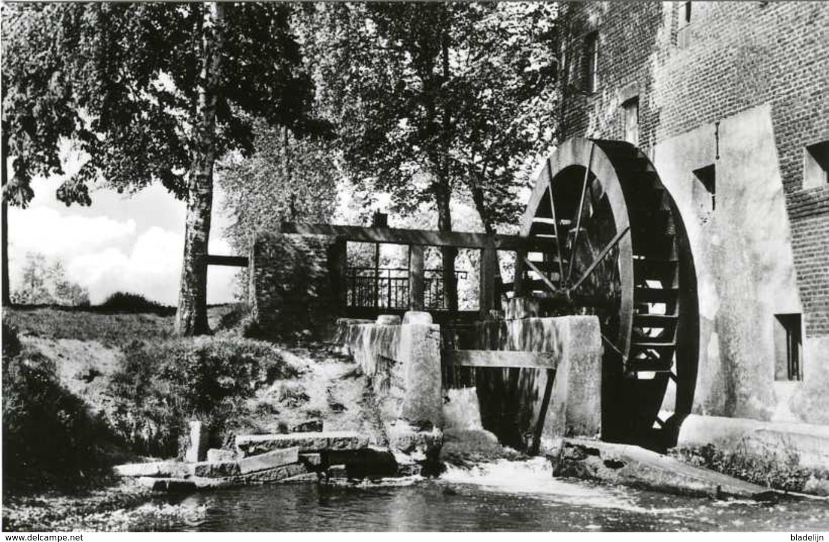 OVERPELT (Limburg) - Watermolen/moulin à Eau - Fraaie Prentkaart Van De Bemvaartse Molen Omstreeks 1960 - Overpelt
