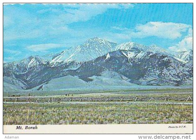 USA        H217        Mount Borah - Etats-Unis