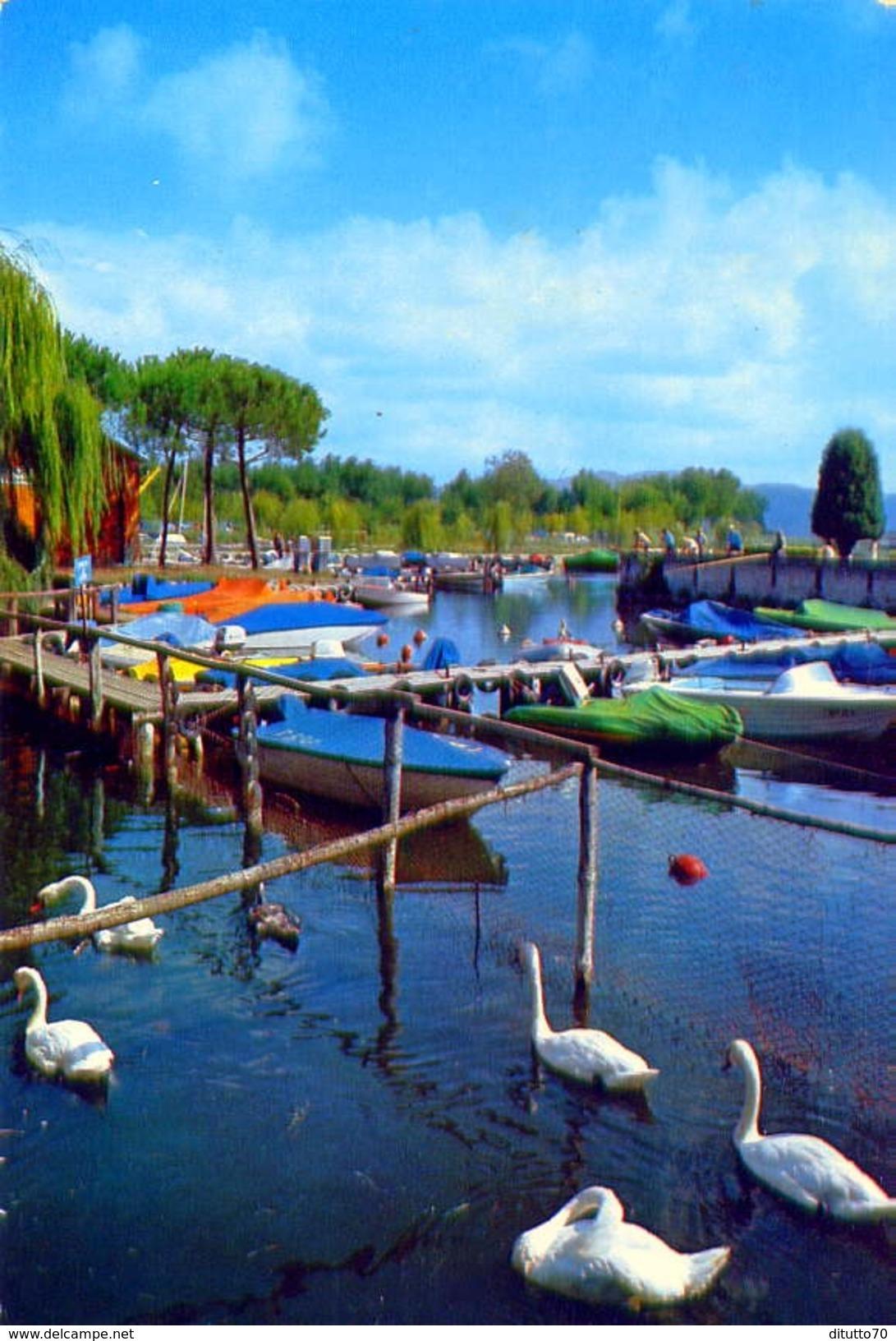 Torre Del Lago Puccini - Viareggio - Lago Dei Cigni E Darsena Motobarche - Formato Grande Non Viaggiata – E1 - Viareggio