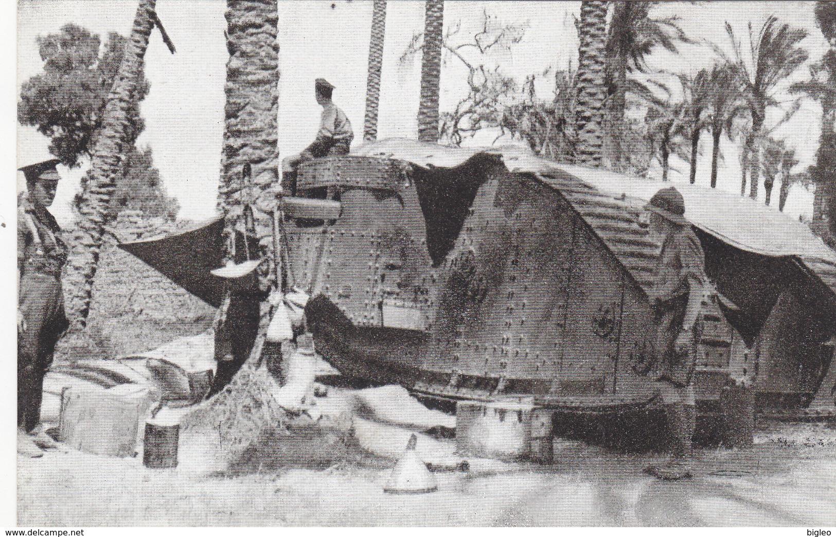 Una Tank Fra I Palmizi In Palestina     (A-20-110319) - Palästina