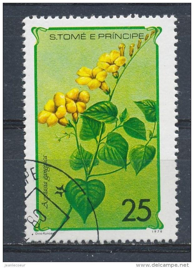 S Tomé En Principe/S Tomé And Principe/S Tomé Et Principe/S Tomé Und Principe 1979 Mi: 573 (Gebr/used/obl/o)(1339) - Sao Tome En Principe