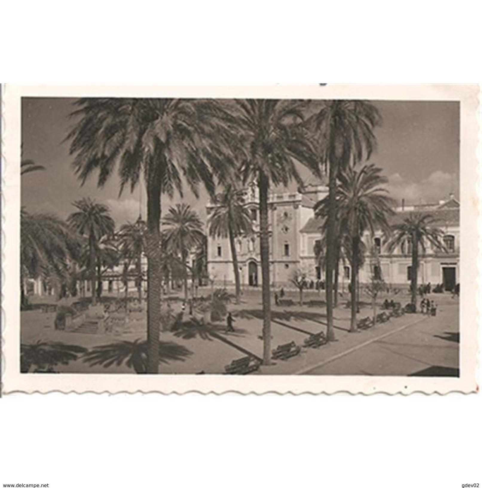 HLVTP7308-LFTD6798.Tarjeta Postal DE HUELVA.Edificios.CATEDRAL Y PLAZA DE LA MERCED   En HUELVA - Huelva