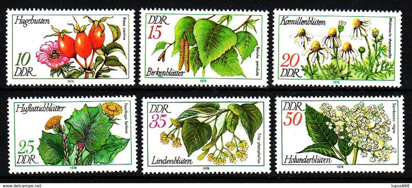 DDR  1978  MiNr.  2287/ 2292 ** / Mnh   Arzneipflanzen - Heilpflanzen