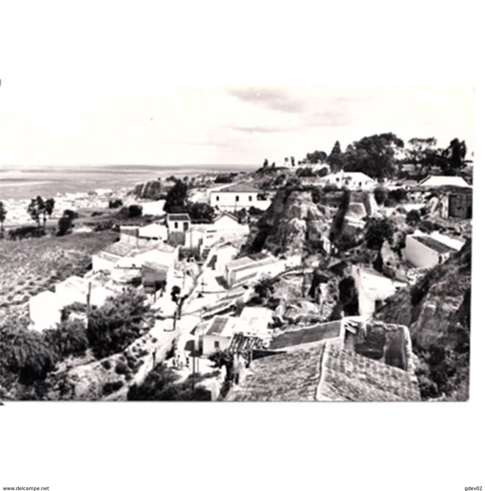HLVTP7365-LFTD7123.Tarjeta Postal DE HUELVA.Casas,arboles,y CALLE CORRILLO ALTO  En HUELVA - Huelva