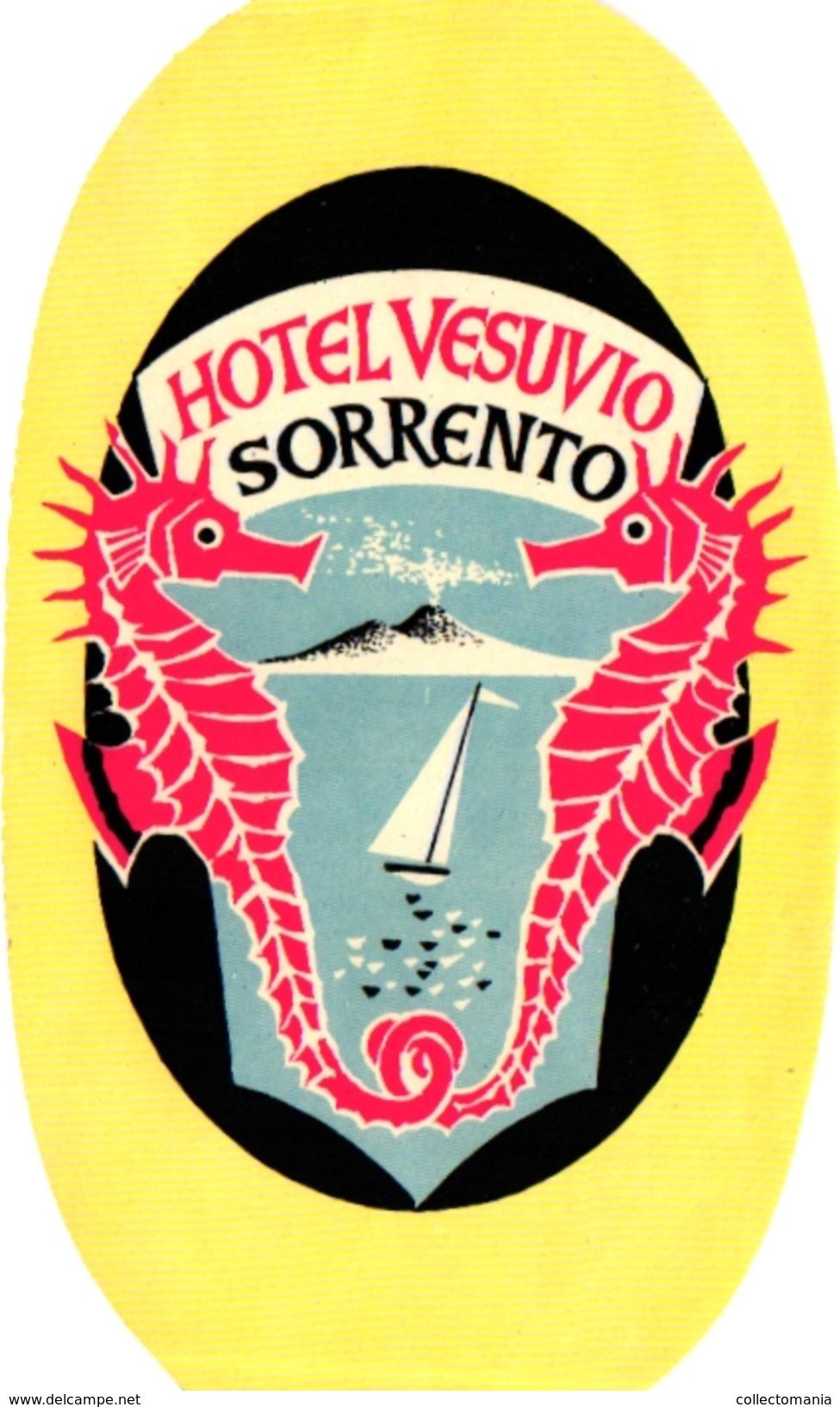 1 Hotel Label Etiquette Sea Horse Hippocampe Zeepaardje Pub Hotel Vesuvio  Sorrento - Hotel Labels