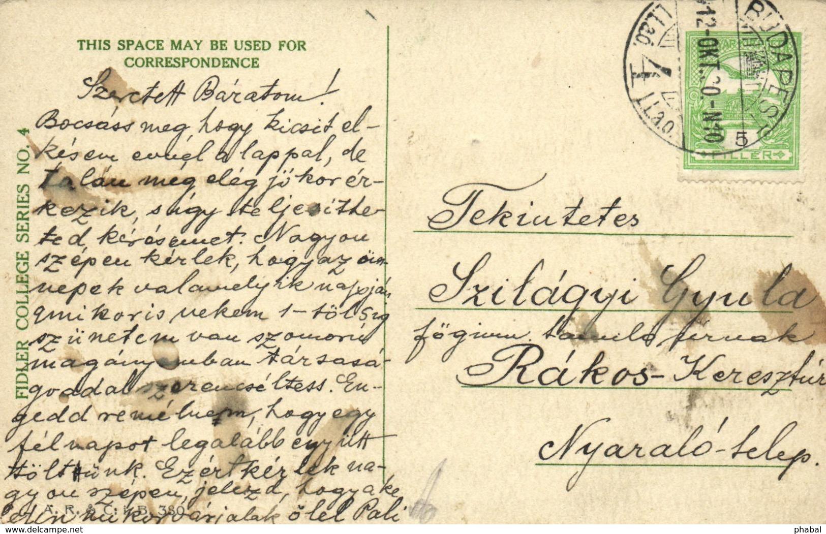 Alice Fidler, Pretty Lady, American Girl, Old Postcard - Künstlerkarten