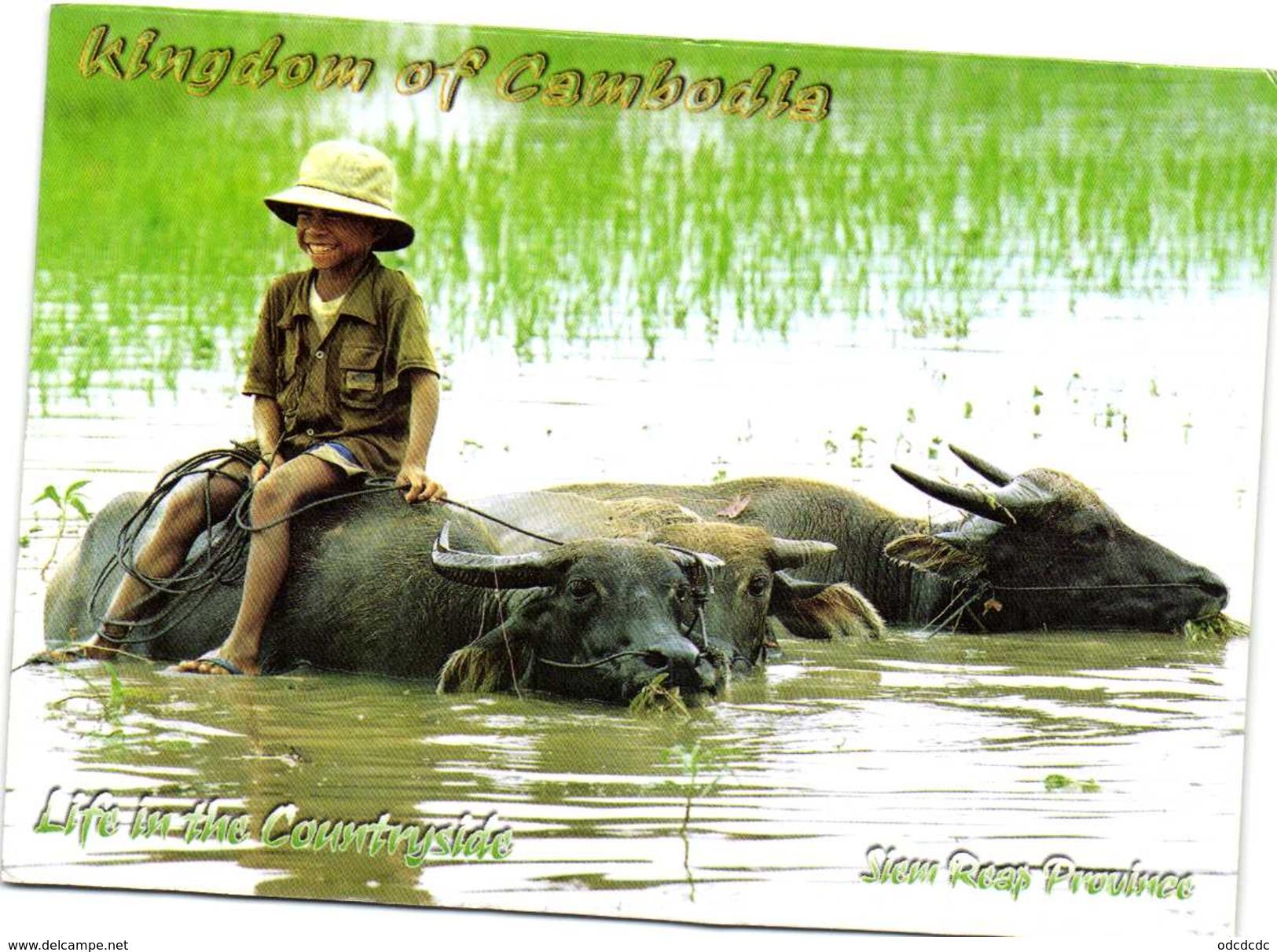 Kingdom Of Cambodja Life In The Countyside Recto Verso Beau Timbre - Cambodia