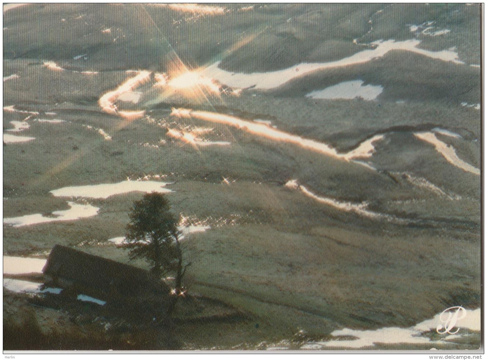 15 - CANTAL - Coll. Prestige -  Un Buron - Autres Communes