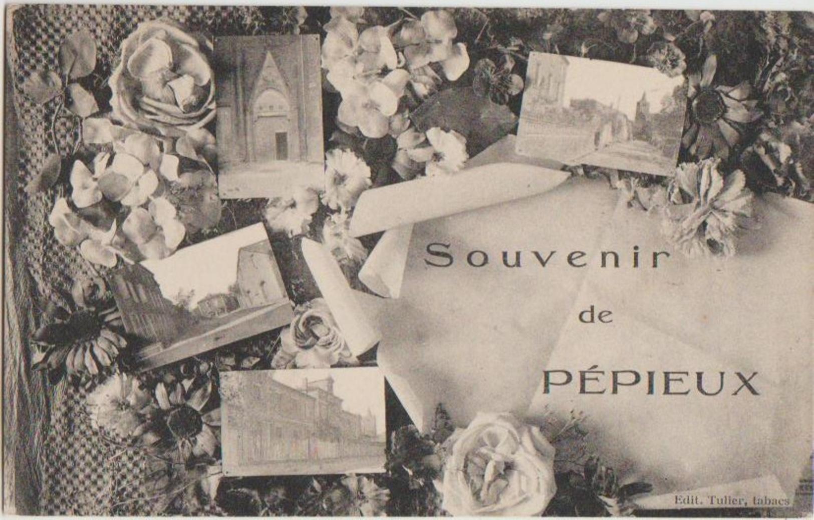 CPA 11 PEPIEUX Souvenir Fantaisie 4 Vues Fleurs - Non Classificati