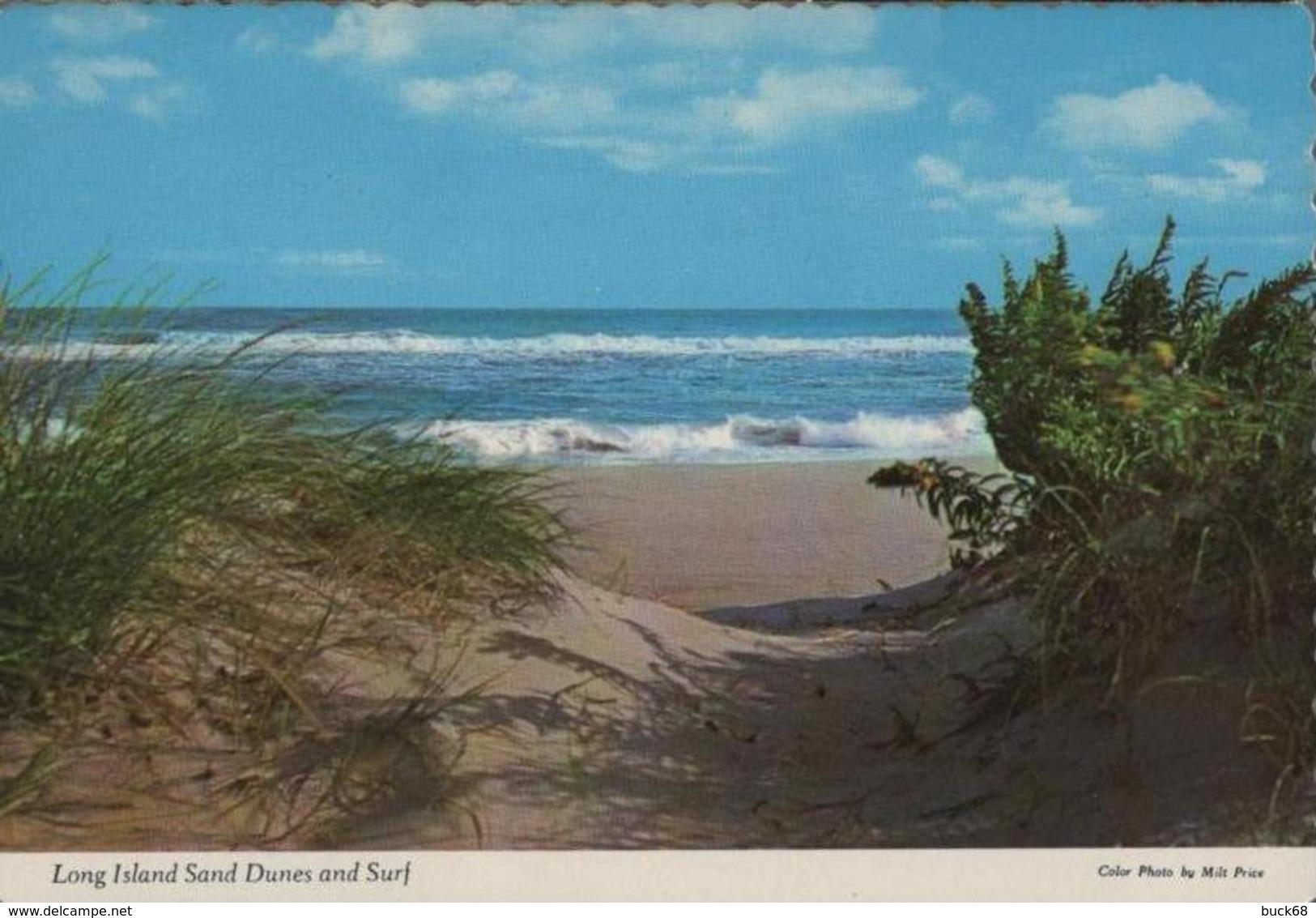 CPM ETATS-UNIS USA Long Island Vacation Paradise Plage Beach - Long Island