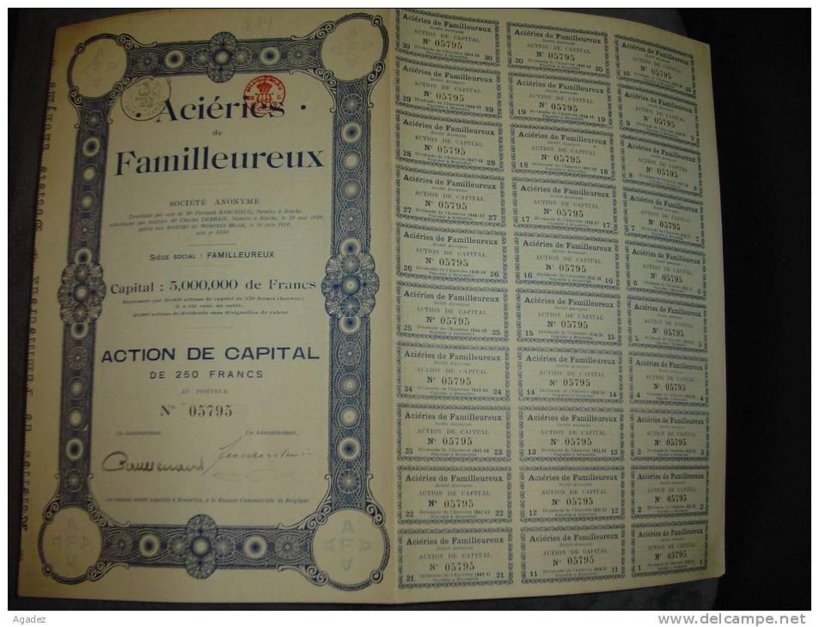"""Action""""Aciéries De Familleureux""""Seneffe Fonte ,acier Métaux 1920 - Industrie"""