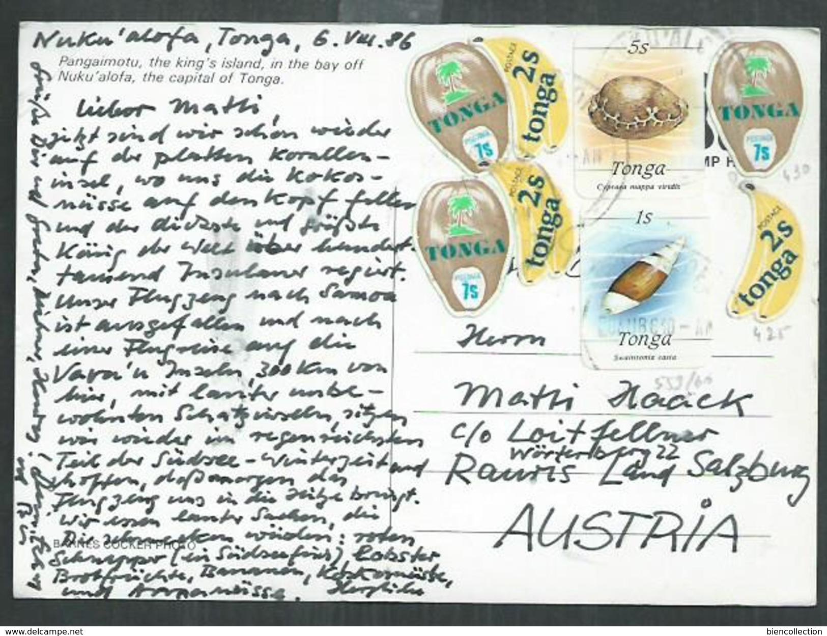 Tonga. Timbres Sur Carte Postale ,banane, Noix De Coco, Coquillage. Banana, Coconut, Shell - Tonga (1970-...)