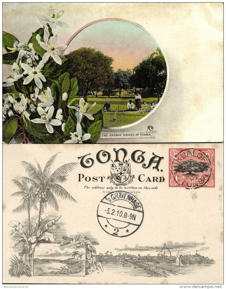 Tonga Islands, The Orange Groves (1909) Pre-Printed Stamp - Tonga