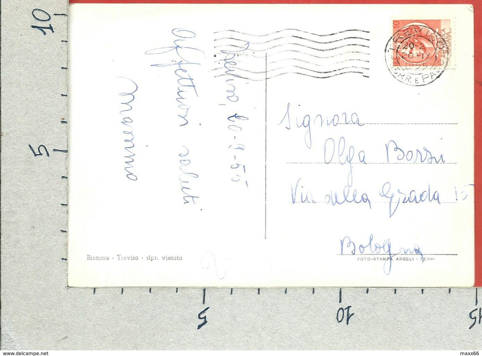 CARTOLINA VG ITALIA - TREVISO - Ponte Garibaldi - 10 X 15 - ANN. 1955 - Treviso