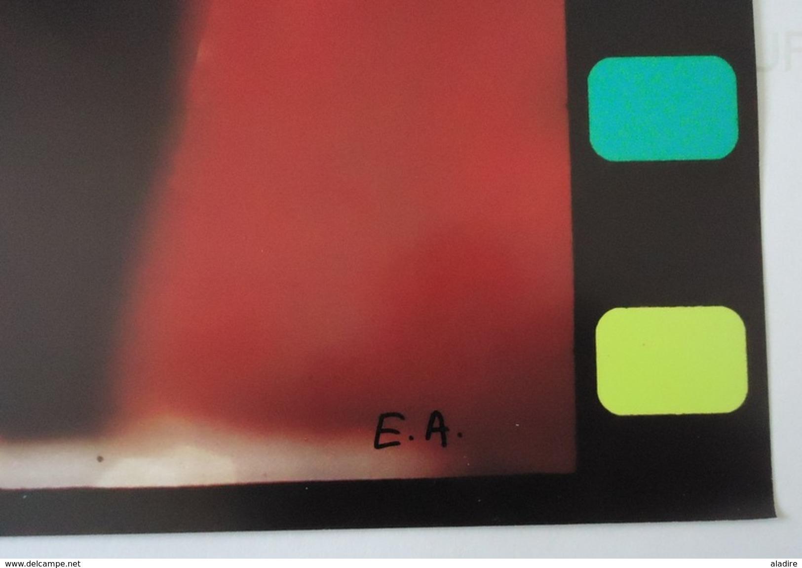 NIKI DE SAINT PHALLE - Epreuve D'artiste, Photographie Originale En Couleurs, 50 X 44 Cm , Signée - Autres