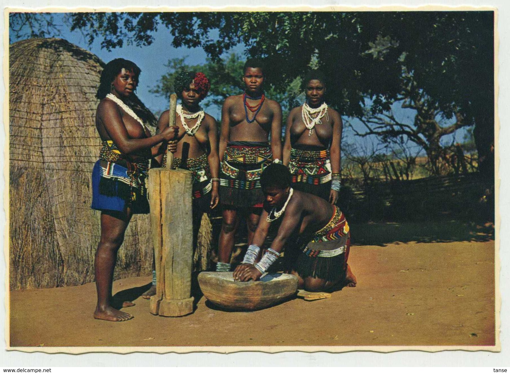 South Africa (Sud Africa) - Natal - African Girls Stamping Maize (lavorazione Mais) - South Africa