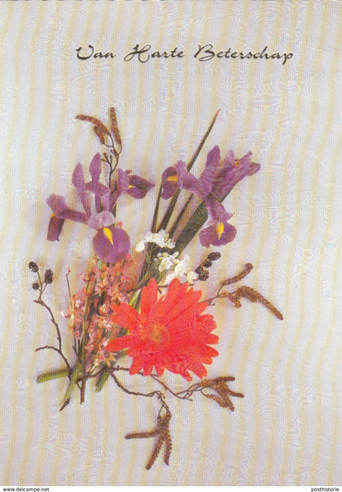 Ansicht 8 Feb 1982 Loppersum (stempeltype Openbalk) - Postal History