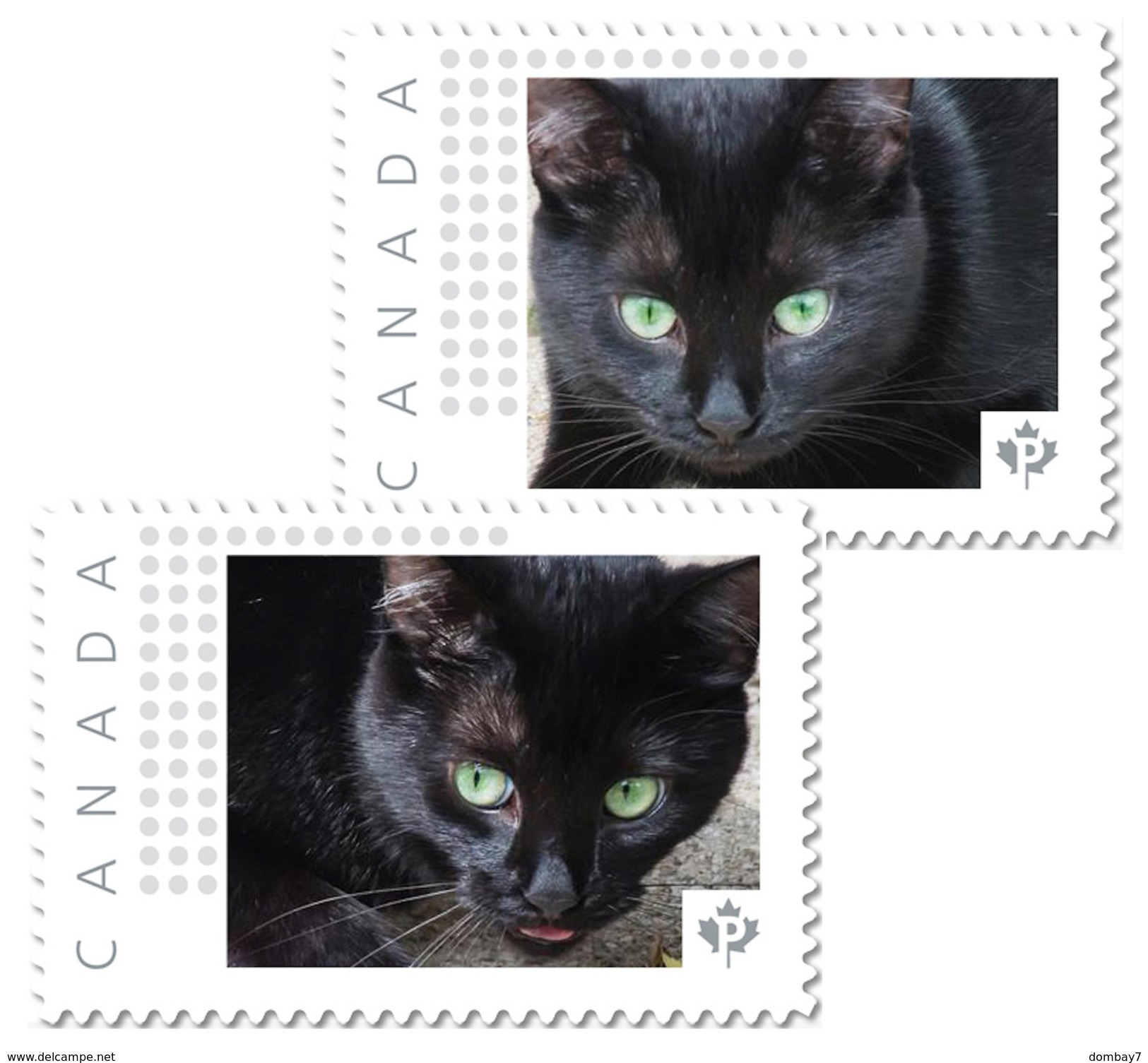 BLACK CAT With GREEN EYES Set Of 2 Unique Personalized Picture Postage Stamps Canada 2017 P17-04bc2 - Domestic Cats