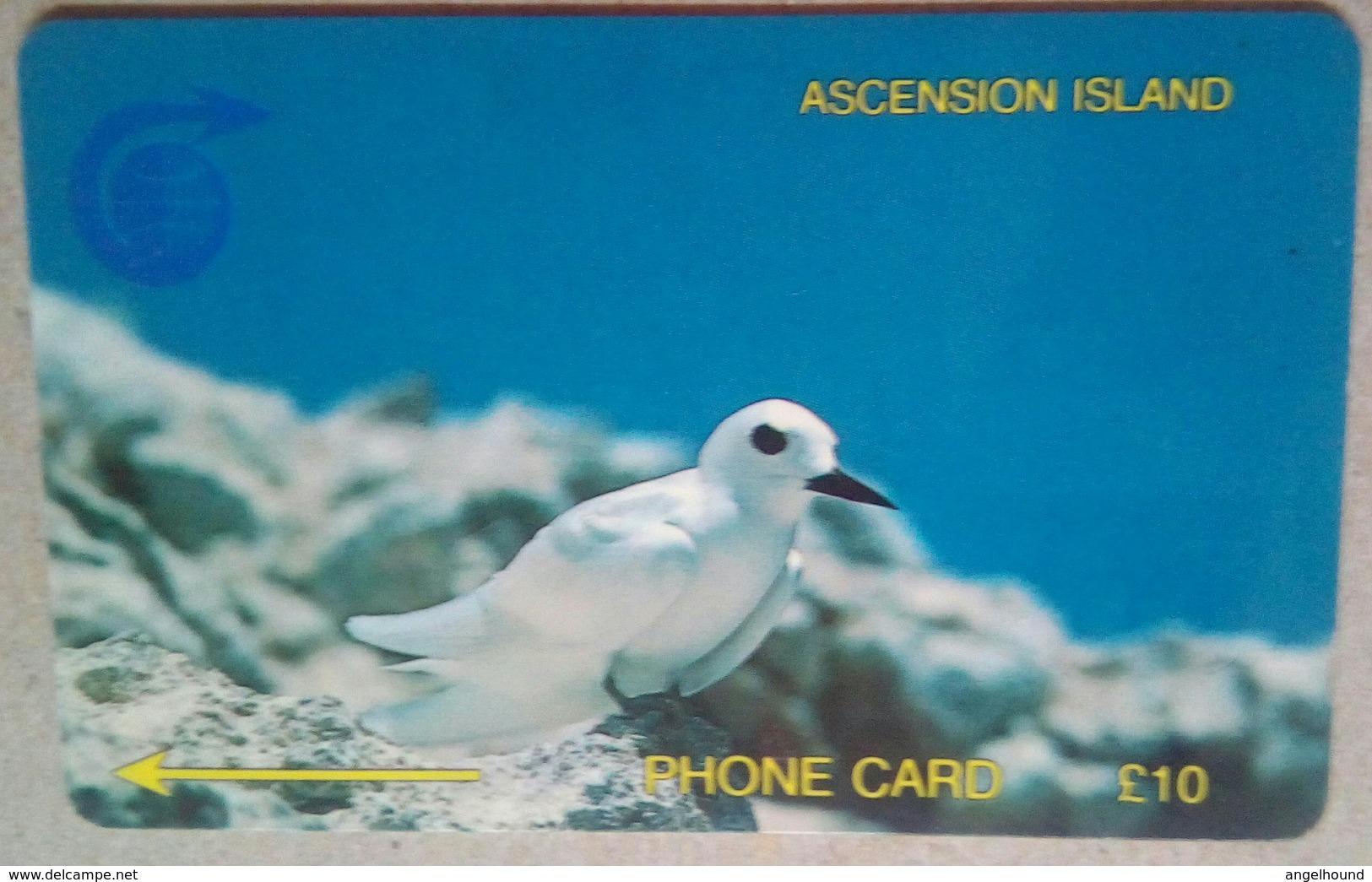 3CASB 10 Pounds - Ascension (Insel)