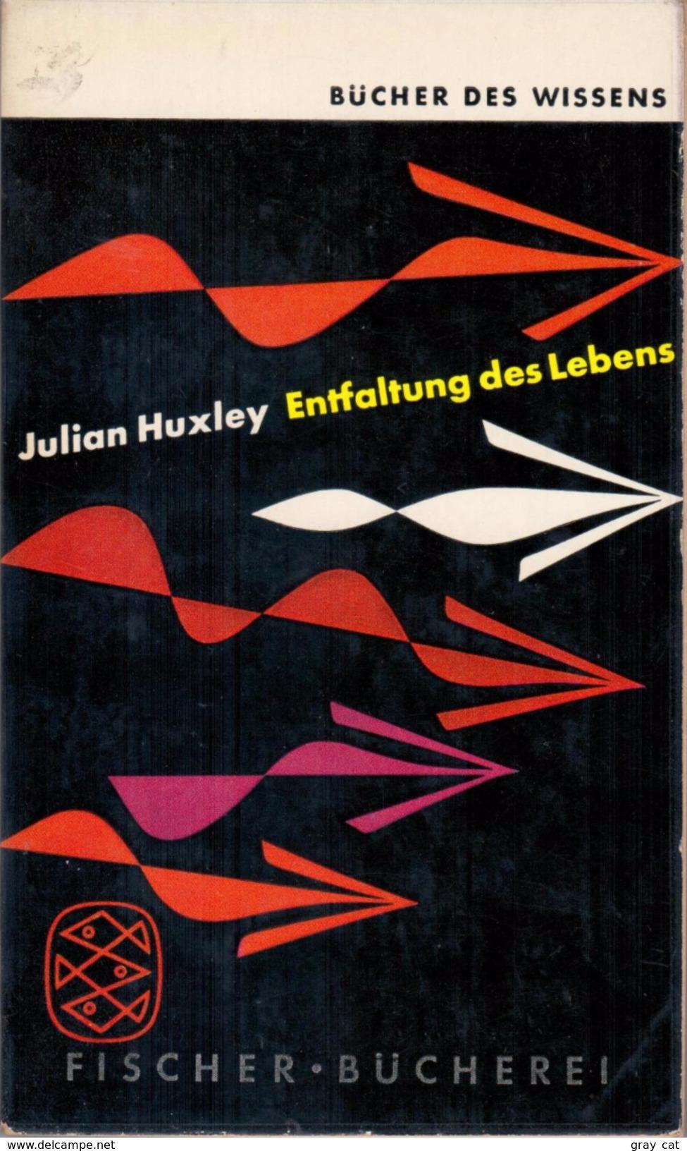 Entfaltung Des Lebens By Huxley, Julian - Books, Magazines, Comics