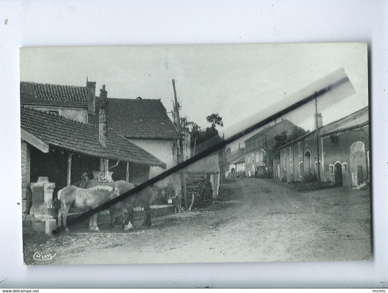 CPA  Rétrécit -  Colombey Les Choiseul - (Hte Marne ) - La Fontaine Et La Mairie (Cheval , Chevaux ) - Autres Communes