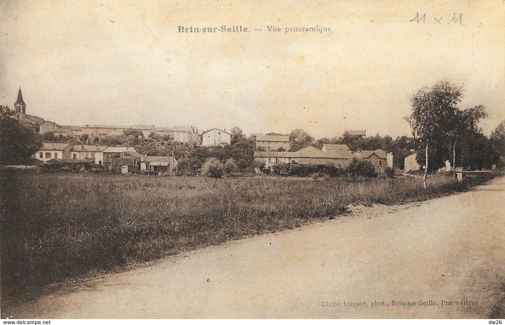Brin-sur-Seille (Meurthe Et Moselle) - Vue Panoramique - Edition Par, Photo Liégaut - Francia