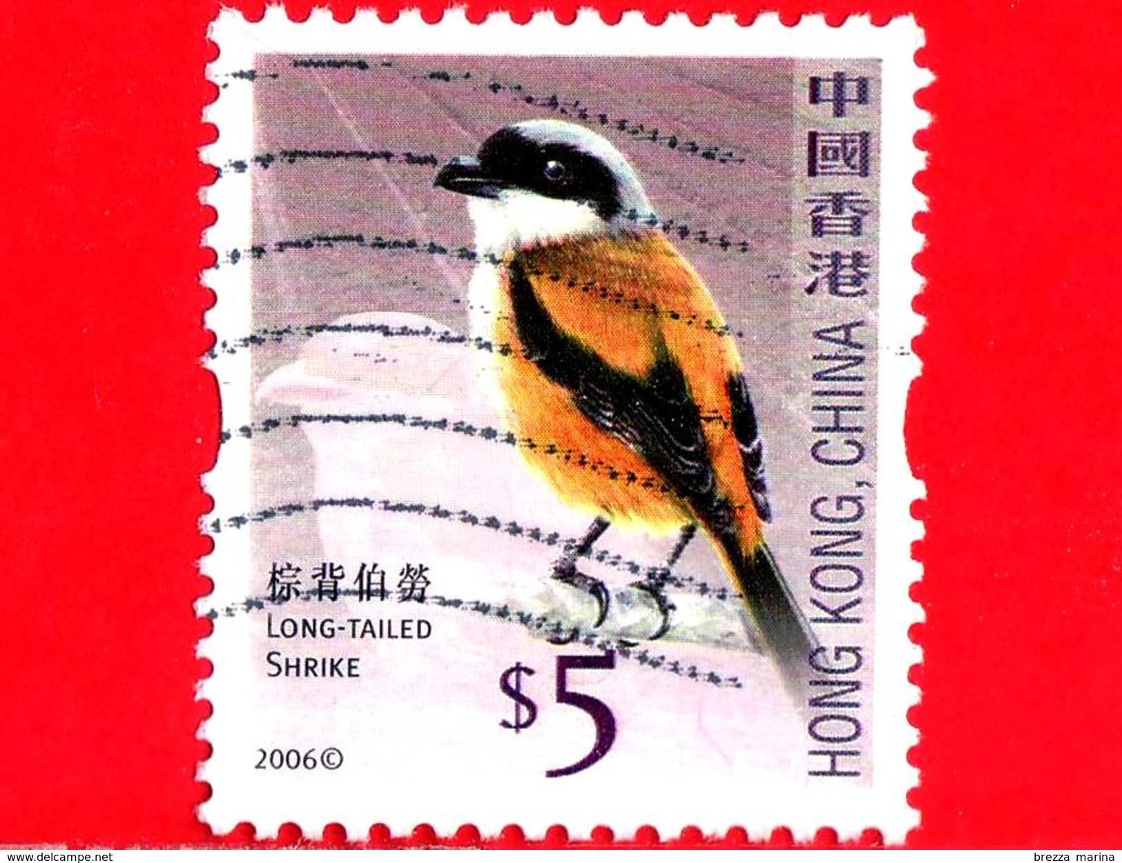 HONG KONG - Usato - 2006 - Uccelli - Averle - Long Tailed Shrike - Birds - 5 - 1997-... Regione Amministrativa Speciale Della Cina