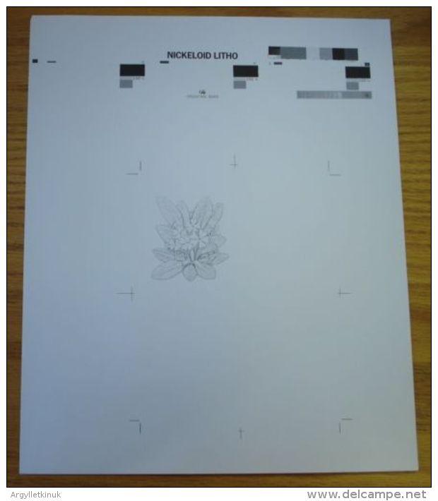 GB SCOTLAND QUEEN ELIZABETH STATIONERY PROOF LETTERCARD FLOWERS PRIMROSE 1981 - 1952-.... (Elizabeth II)