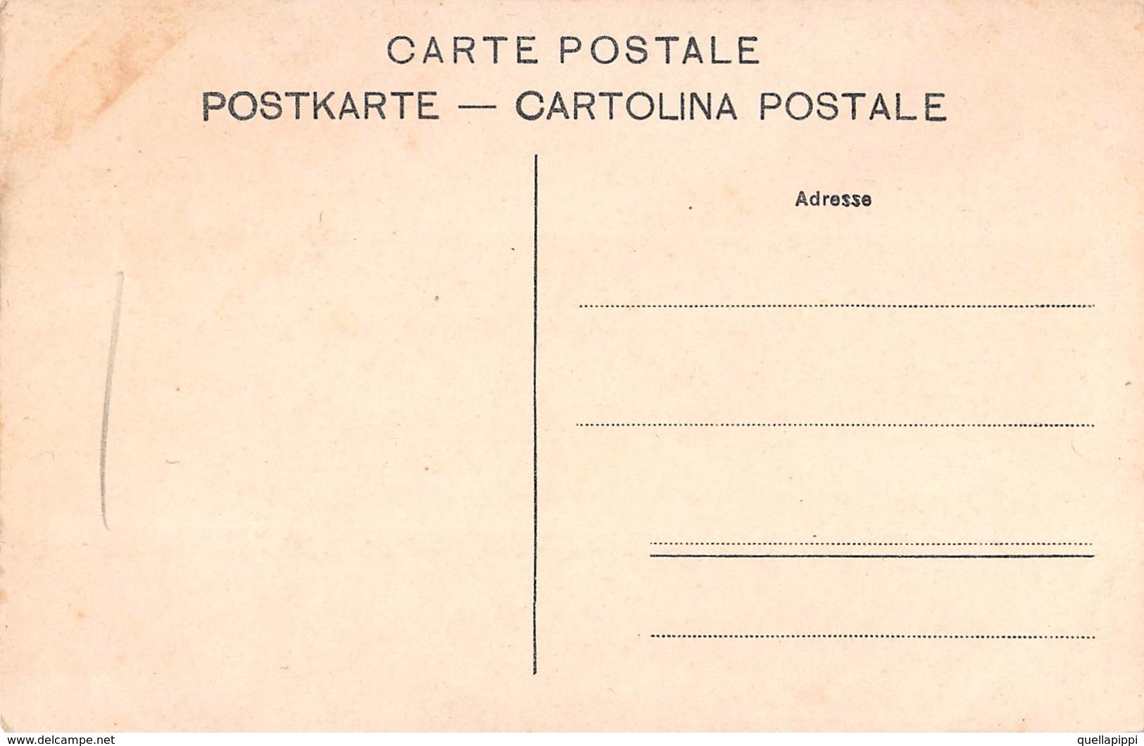 """D5801 """"CHEMIN DE FER MONTREUX-OBERLAND - LA CHAUDANNE""""  TRENO. CART. NON SPED. - VD Vaud"""