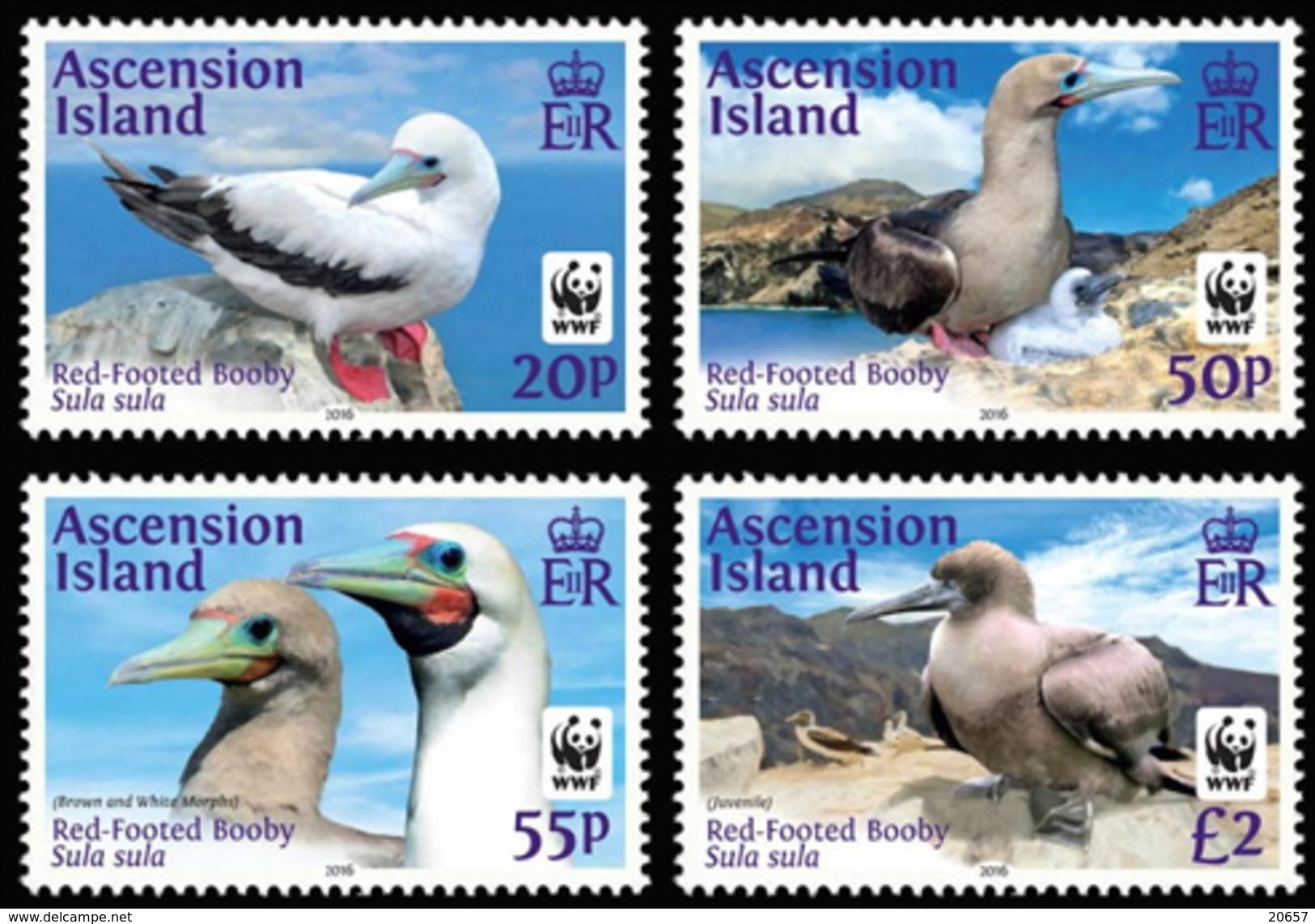 ASCENSION 2016 Oiseaux Wwf - W.W.F.