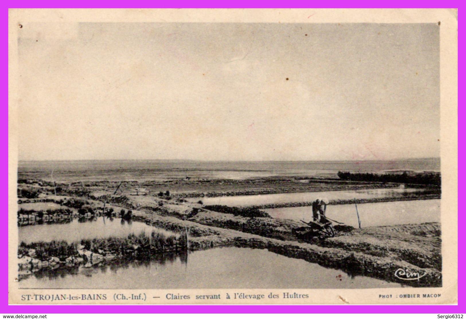 SAINT-TROJAN-les-BAINS (17) - Claires Servant à L'élevage Des Huîtres - Ile D'Oléron