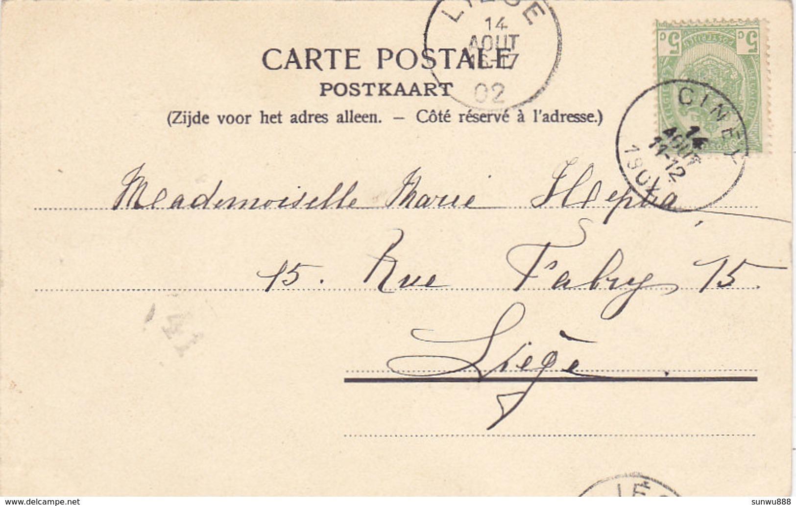 Souvenir De Ciney - Le Château De Taviet (Librairie Pesesse, 1902) - Ciney