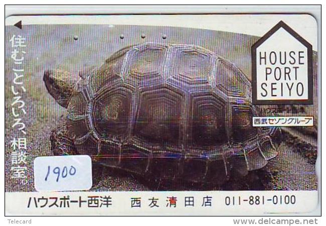 Télécarte Japon * TURTLE * TORTUE  (1900)  PHONECARD JAPAN * * TELEFONKARTE * SCHILDKRÖTE - Turtles