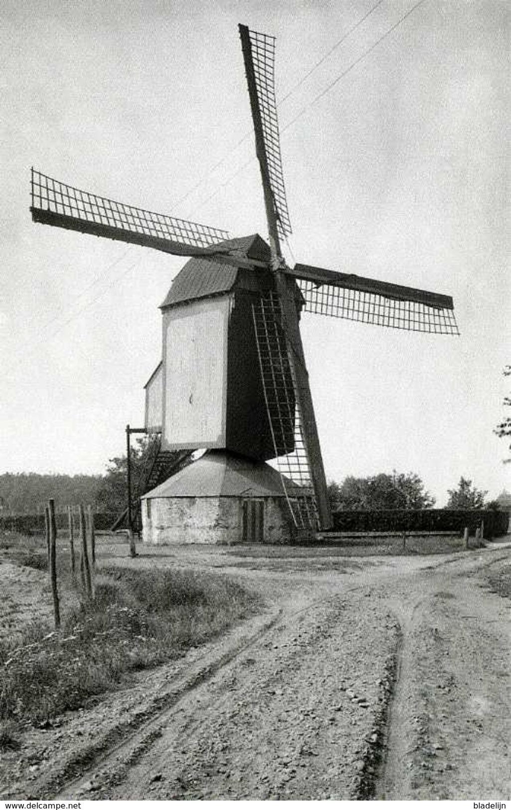 HELDEN - Gem. Peel En Maas (Limburg) - Molen/moulin - De Verdwenen Standerdmolen Op De Molendries In 1929. TOP !!! - Nederland