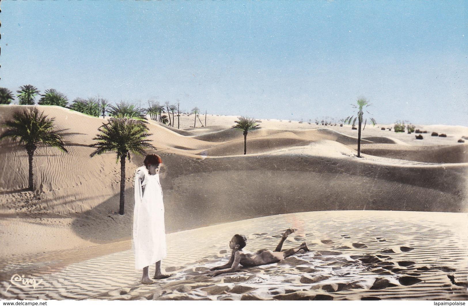 Cartes Postales > Afrique > Algérie > Scènes & Types Dans La Palmeraie Collection Artistique L'Afrique - Algeria