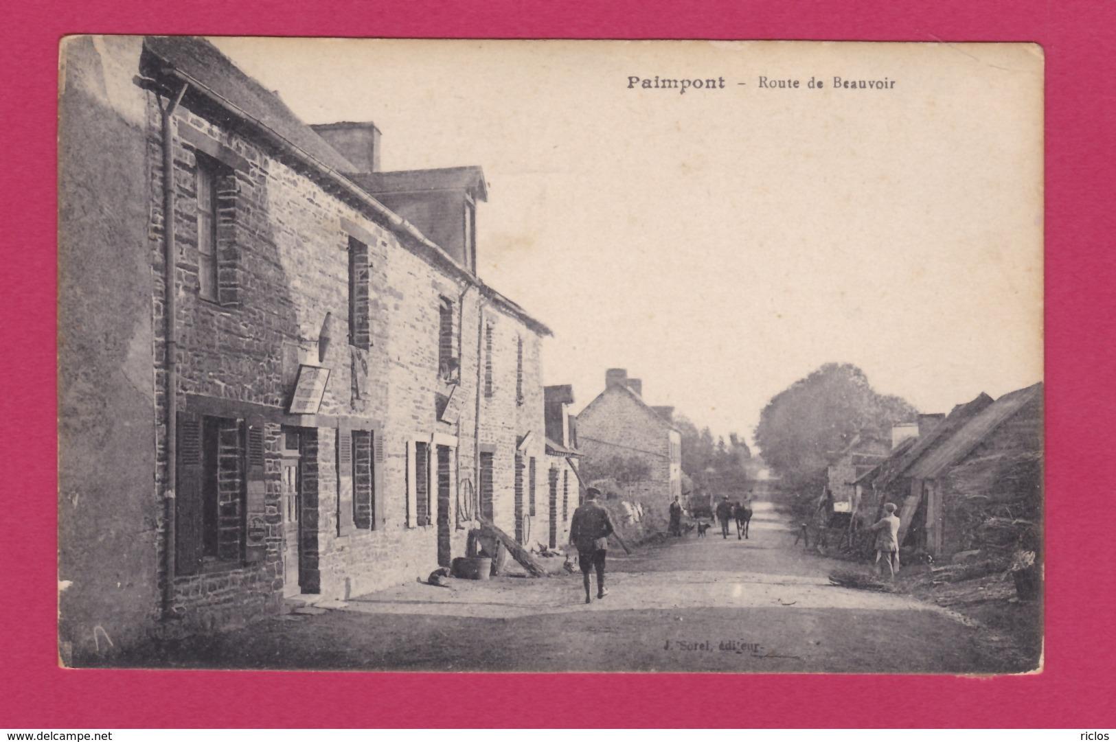 35 - PAIMPONT - Route De Beauvoir - Paimpont