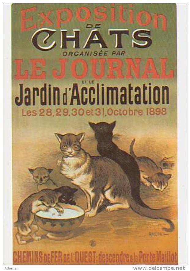 Chat       H39        Expos De Chats.Le Journal Et Le Jardin D'acclimatation ( Chemin De Fer ) - Publicité